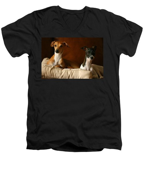 Italian Greyhounds Men's V-Neck T-Shirt by Angela Rath