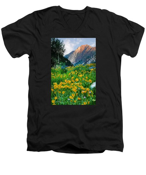 Wasatch Mountains Men's V-Neck T-Shirt by Utah Images
