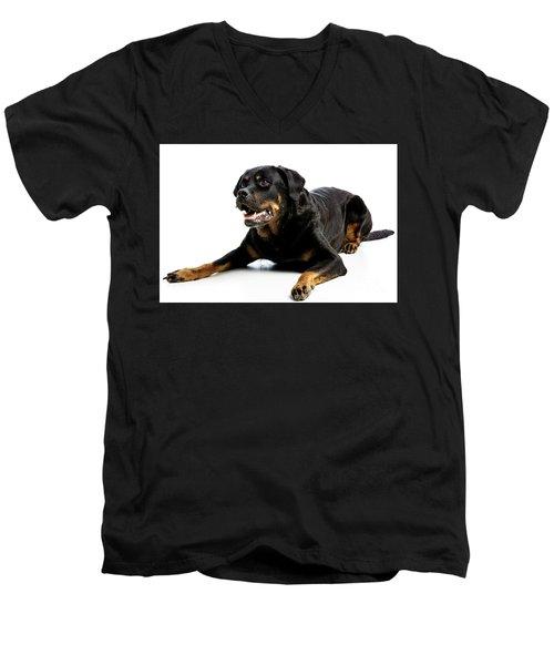 Rottweiler Dog Men's V-Neck T-Shirt