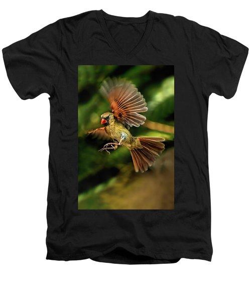 A Cardinal Approaches Men's V-Neck T-Shirt