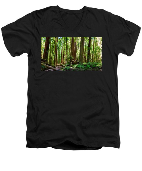 A Family Of Redwoods Panorama Men's V-Neck T-Shirt