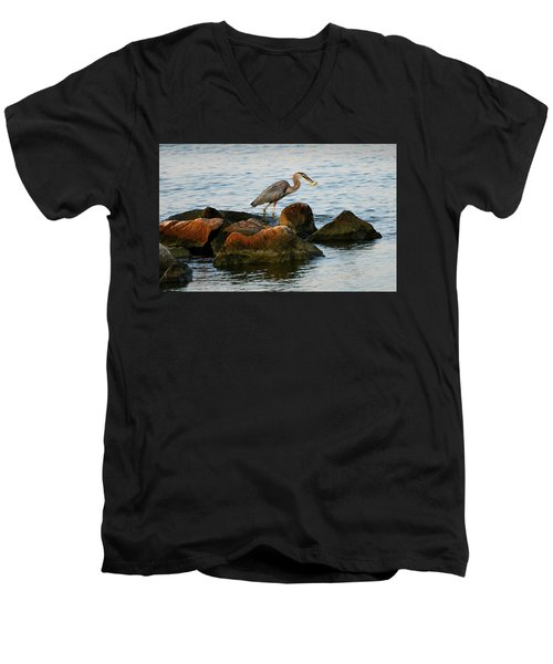 A Great Blue Heron Day Men's V-Neck T-Shirt