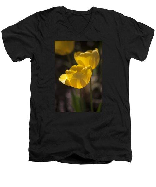 A Happy Spring Moment Men's V-Neck T-Shirt by Morris  McClung