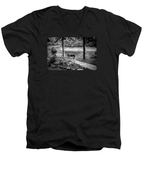 A Lone Bench By The Nantahala River Men's V-Neck T-Shirt by Kelly Hazel