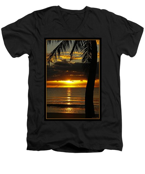A Touch Of Paradise Men's V-Neck T-Shirt