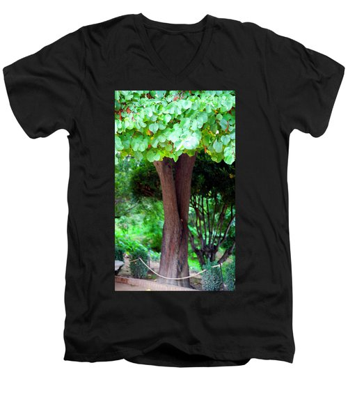 Men's V-Neck T-Shirt featuring the photograph A Tree Lovelier Than A Poem by Madeline Ellis