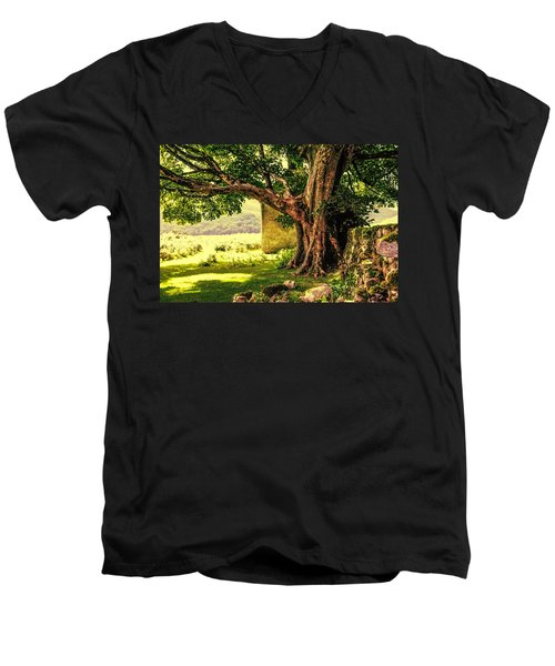 Abandoned Ruins Men's V-Neck T-Shirt