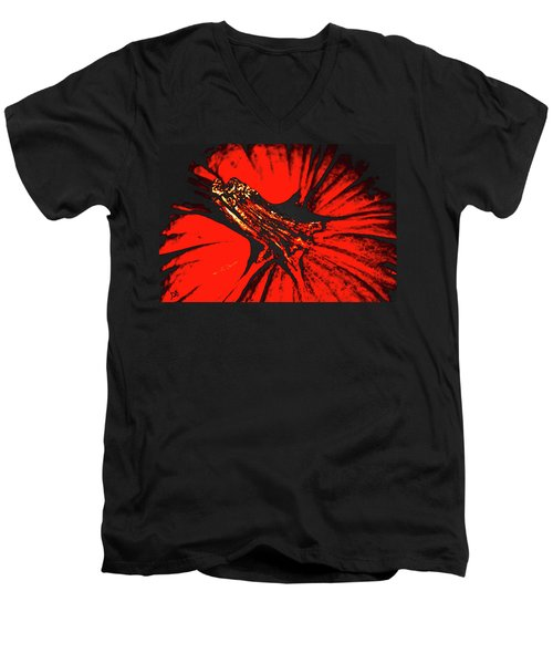 Abstract Pumpkin Stem Men's V-Neck T-Shirt