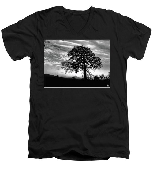 Acacia And Volcano Silhouetted Men's V-Neck T-Shirt