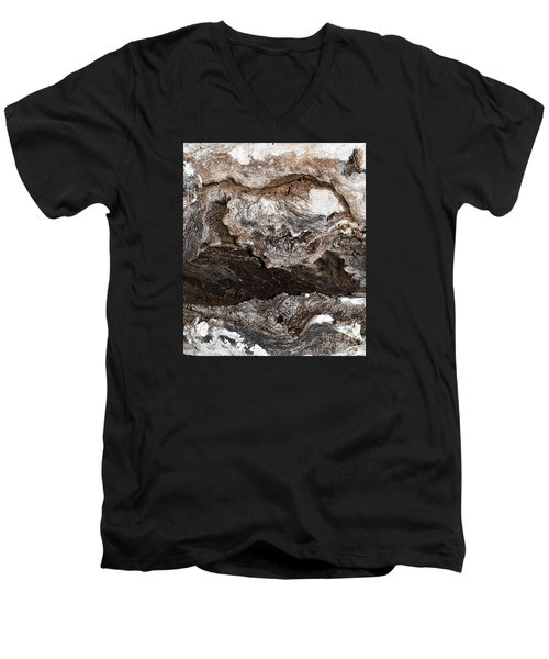 Men's V-Neck T-Shirt featuring the photograph Adventure by Ray Shrewsberry