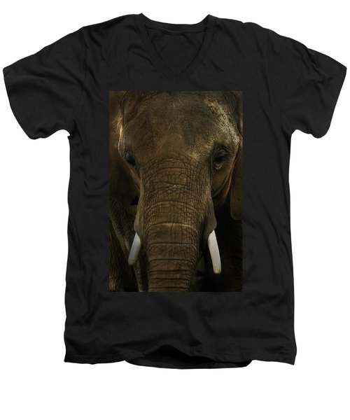 Men's V-Neck T-Shirt featuring the photograph African Elephant by Michael Cummings
