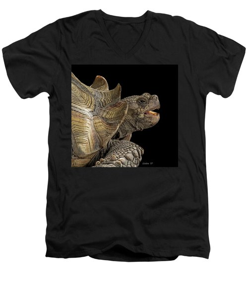 African Spurred Tortoise Men's V-Neck T-Shirt