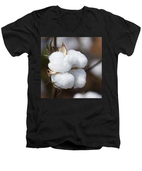 Alabama Cotton Boll Men's V-Neck T-Shirt