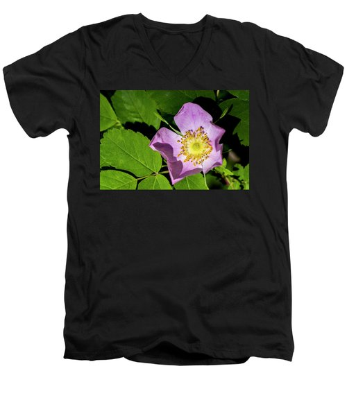 Men's V-Neck T-Shirt featuring the photograph Alberta Wild Rose Opens For Early Sun by Darcy Michaelchuk