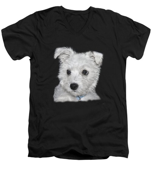 Alert Puppy On A Transparent Background Men's V-Neck T-Shirt by Terri Waters