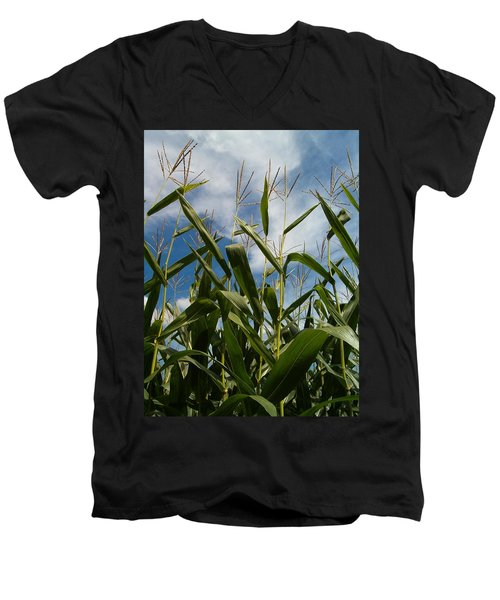 All About Corn Men's V-Neck T-Shirt