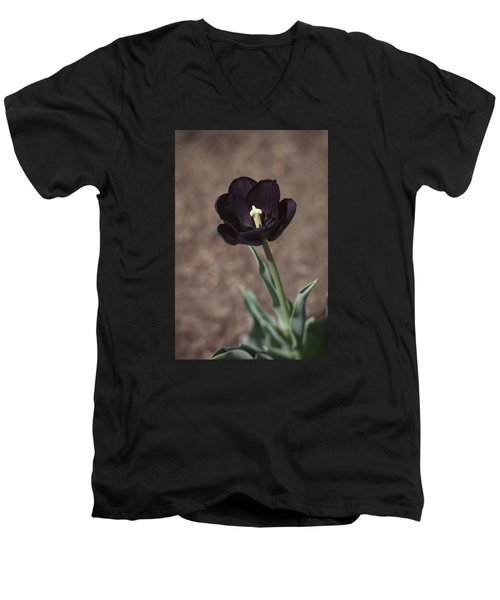 All Darkness And Light Men's V-Neck T-Shirt by Morris  McClung