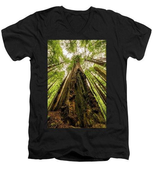 All Hail The King Men's V-Neck T-Shirt