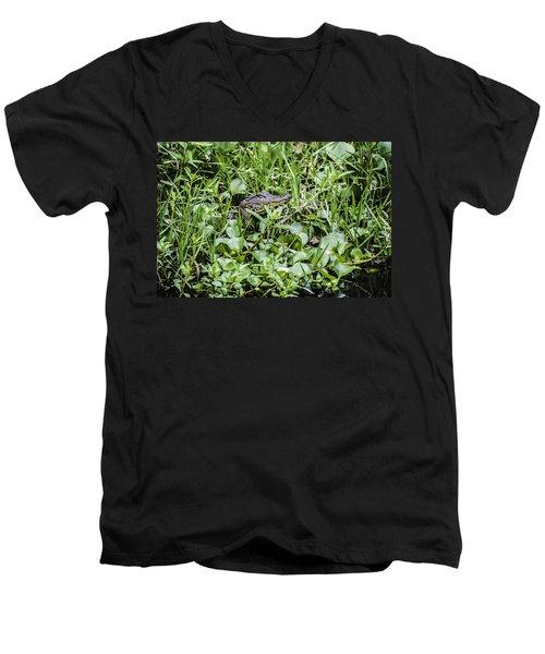 Alligator In Duck Weed, Louisiana Men's V-Neck T-Shirt