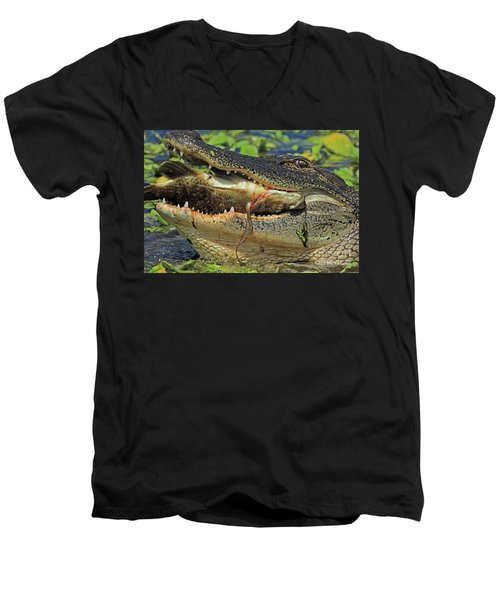 Alligator With Tilapia Men's V-Neck T-Shirt