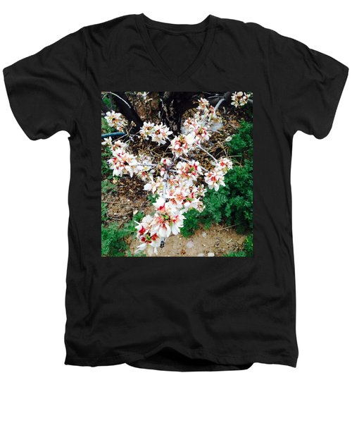 Almond Blossoms Men's V-Neck T-Shirt by Erika Chamberlin