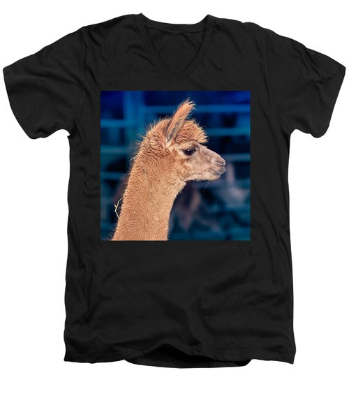 Men's V-Neck T-Shirt featuring the photograph Alpaca Wants To Meet You by TC Morgan