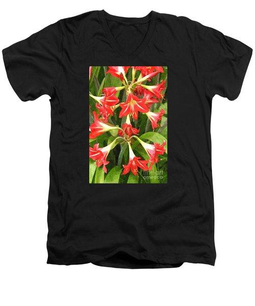 Amaryllis Lily Bunch Men's V-Neck T-Shirt