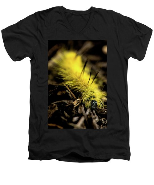 American Dagger Moth Caterpillar Men's V-Neck T-Shirt