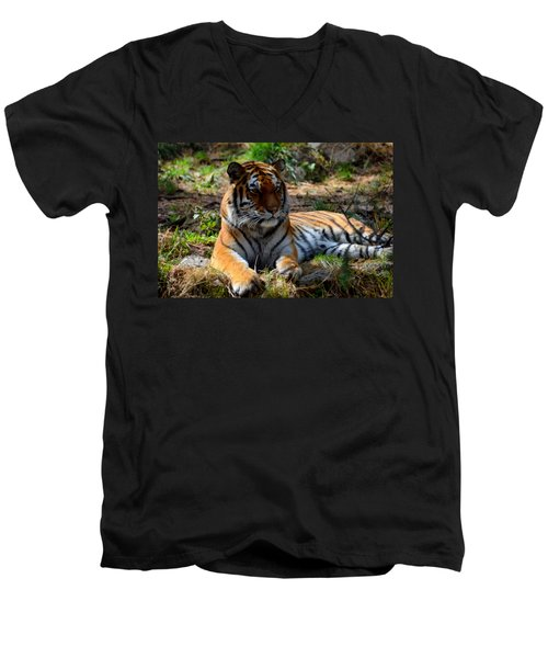 Men's V-Neck T-Shirt featuring the mixed media Amur Tiger 1 by Angelina Vick
