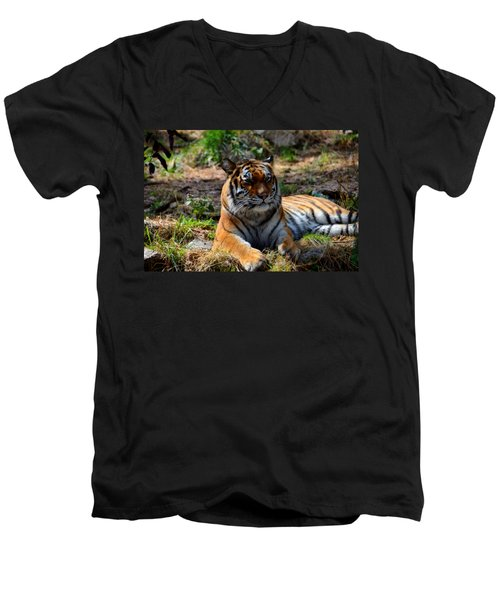 Men's V-Neck T-Shirt featuring the mixed media Amur Tiger 10 by Angelina Vick