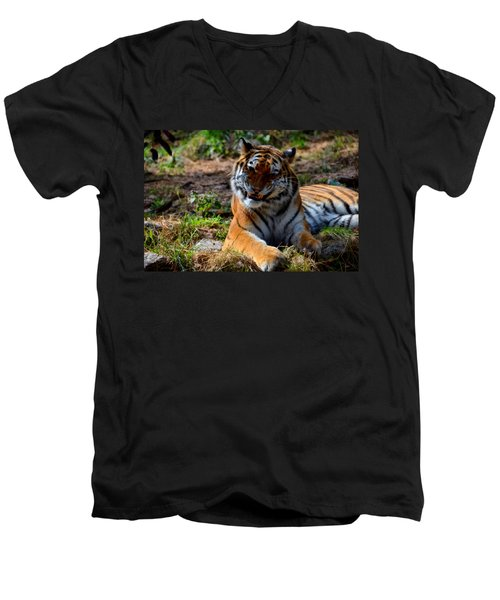 Men's V-Neck T-Shirt featuring the mixed media Amur Tiger 4 by Angelina Vick