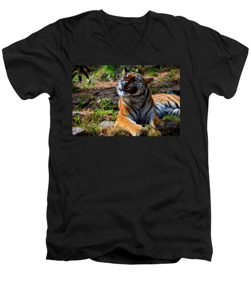 Men's V-Neck T-Shirt featuring the mixed media Amur Tiger 6 by Angelina Vick