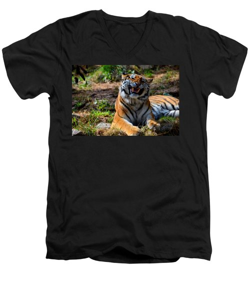 Men's V-Neck T-Shirt featuring the mixed media Amur Tiger 7 by Angelina Vick