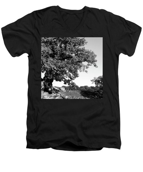 Ancient Oak, Bradgate Park Men's V-Neck T-Shirt by John Edwards