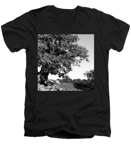 Ancient Oak, Bradgate Park Men's V-Neck T-Shirt