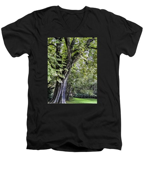 Ancient Tree Luxembourg Gardens Paris Men's V-Neck T-Shirt by Sally Ross