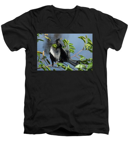 Anhinga Beauty Shot Men's V-Neck T-Shirt
