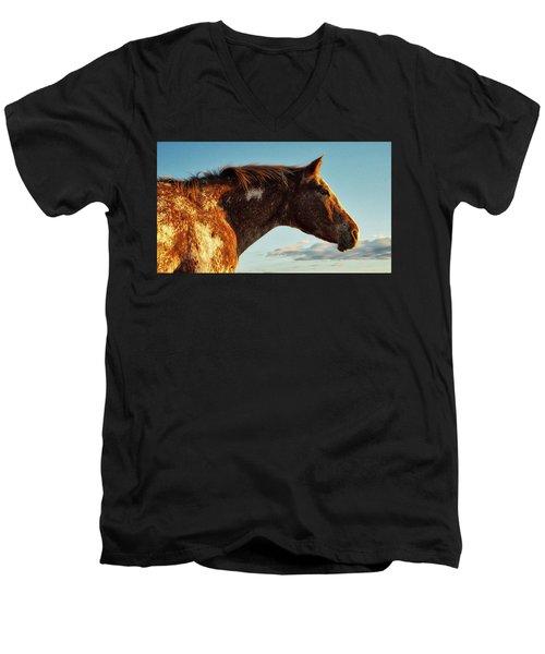 Appaloosa Mare Men's V-Neck T-Shirt