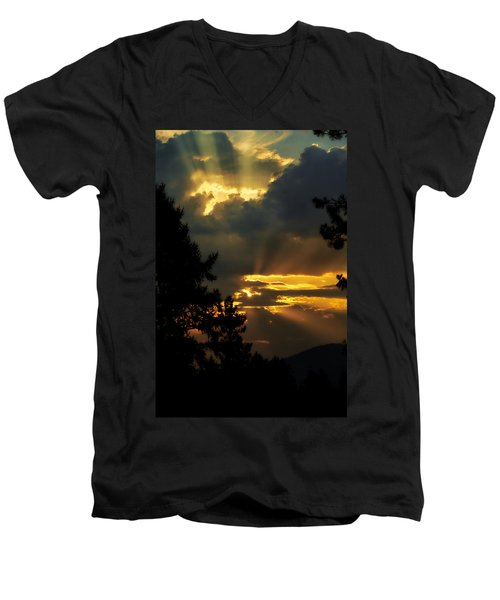 Appreciating Life Men's V-Neck T-Shirt