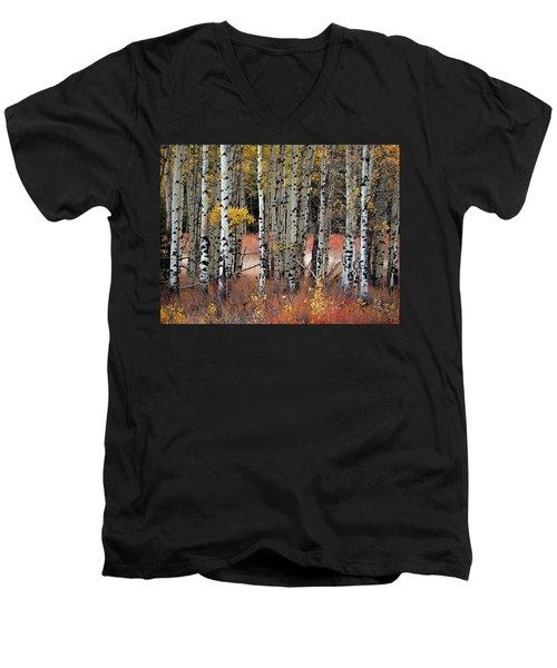 Appreciation II Men's V-Neck T-Shirt
