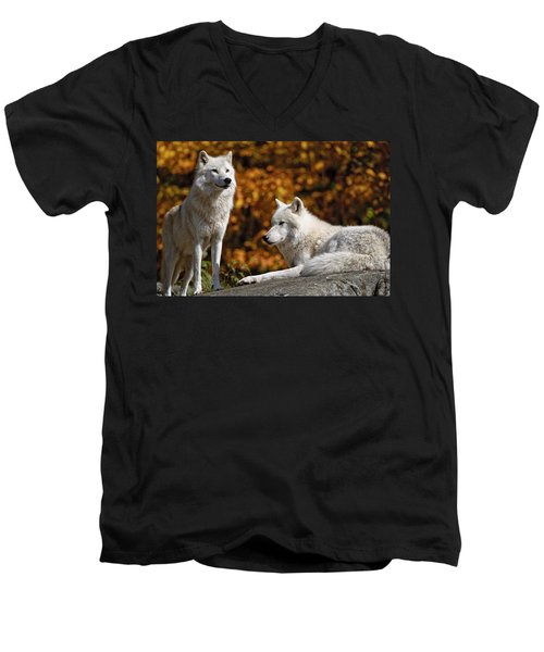 Men's V-Neck T-Shirt featuring the photograph Arctic Wolves On Rocks by Michael Cummings