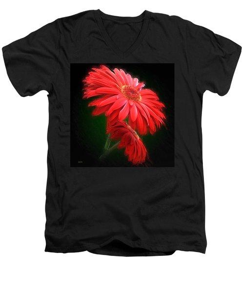 Artistic Touch Men's V-Neck T-Shirt
