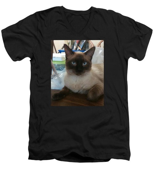 Artist's Assistant Men's V-Neck T-Shirt by Sheri Keith