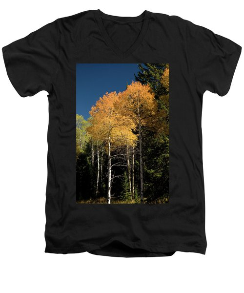 Men's V-Neck T-Shirt featuring the photograph Aspens And Sky by Steve Stuller