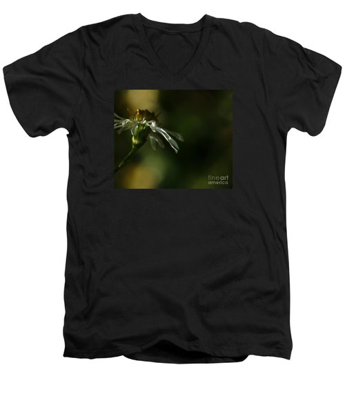 Aster's Peripheral Ray Men's V-Neck T-Shirt