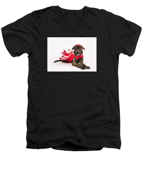 Athena Men's V-Neck T-Shirt