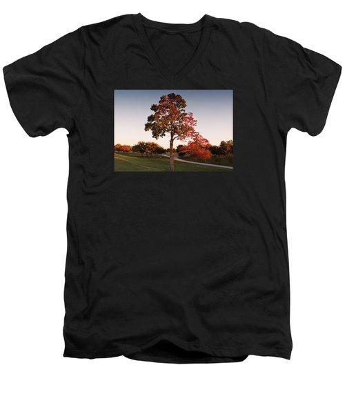Autumn Beauty Men's V-Neck T-Shirt by Milena Ilieva