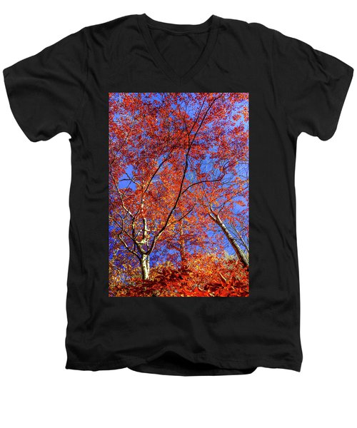 Autumn Blaze Men's V-Neck T-Shirt by Karen Wiles