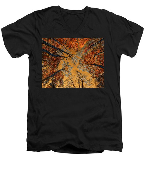 Autumn In The Forest Men's V-Neck T-Shirt