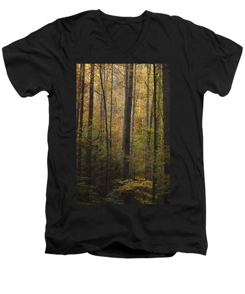 Autumn In The Woods Men's V-Neck T-Shirt by Andrew Soundarajan